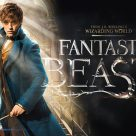 Fantastic-Beasts-and-Where-to-Find-Them-136x136