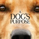 Dog´s-Purpose-136x136
